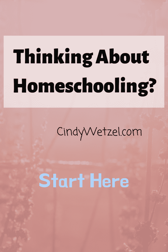 Thinking About Homeschooling
