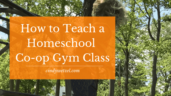 Teach a Homeschool Co-op Gym Class