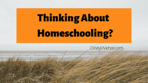 Thinking about homeschooling blog pos