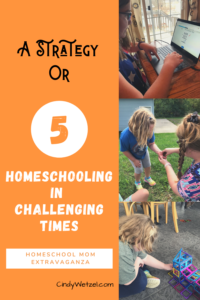 A Strategy or 5: Homeschooling in Challenging Times