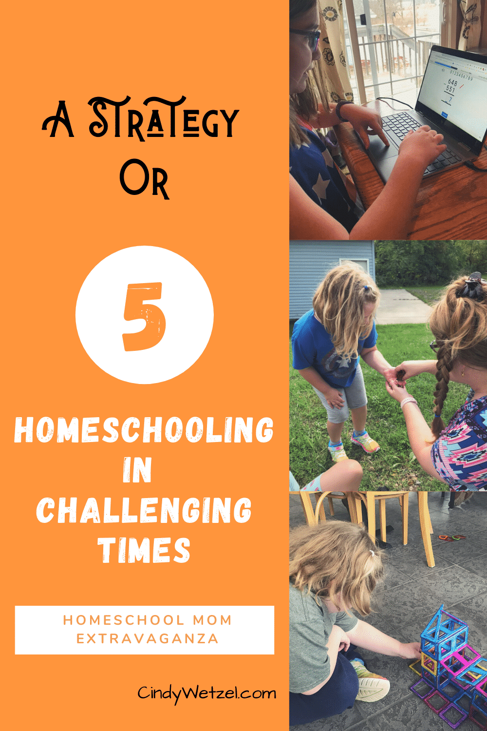 You are currently viewing A Strategy or 5: Homeschooling in Challenging Times