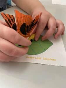 Final Steps of Butterfly Model